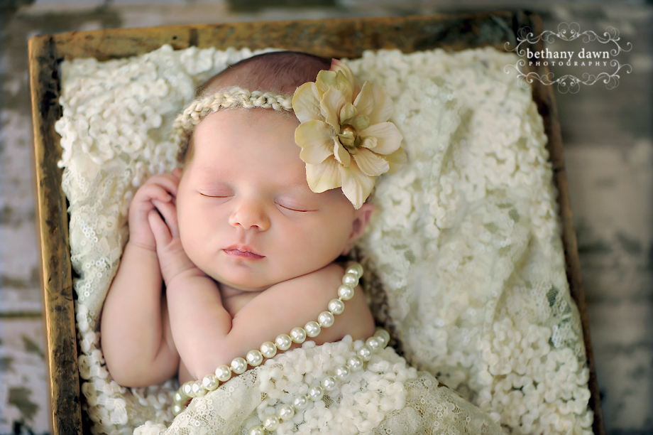 Meet baby hadley she was just 10 days old when i took her newborn photos isnt she beautiful i love love cuddling these sweet babies